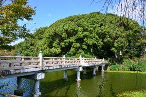 天王寺公園 茶臼山